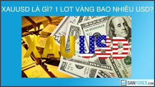 XAUUSD là gì? 1 lot vàng bằng bao nhiêu ounce/usd?